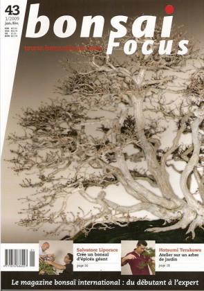 Bonsai Focus FR #43