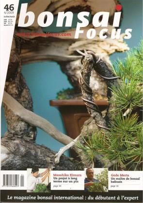 Bonsai Focus FR #46