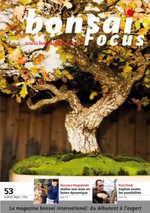 Bonsai Focus FR #53