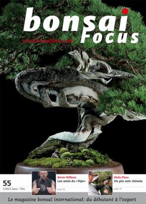 Bonsai Focus FR #55