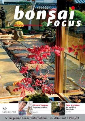 Bonsai Focus FR #59