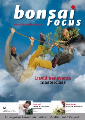 Bonsai Focus FR #61