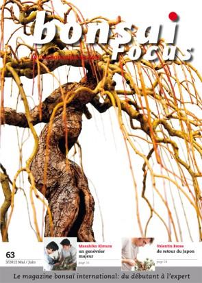 Bonsai Focus FR #63