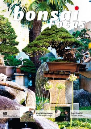 Bonsai Focus FR #68