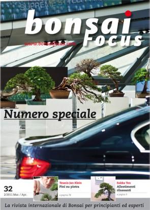Bonsai Focus IT #32