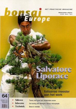 Bonsai Europe NL #64