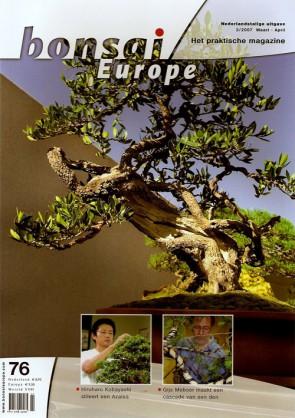 Bonsai Europe NL #76